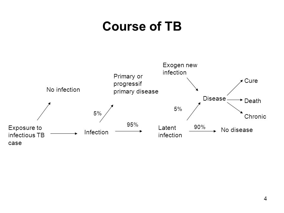 4 Course of TB Exposure to infectious TB case No infection Infection Primary or progressif primary disease Latent infection Exogen new infection No disease Disease Death Chronic Cure 5% 90% 95%