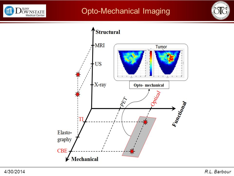 4/30/2014R.L. Barbour Opto-Mechanical Imaging To summarize, the main three $ Combinations of these domains can yield either additive or wholly new inf