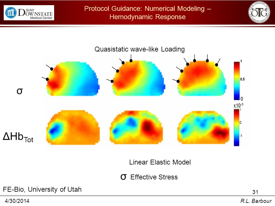4/30/2014R.L. Barbour 31 Protocol Guidance: Numerical Modeling – Hemodynamic Response ΔHb Tot σ To study the interaction of controlled applied mechani