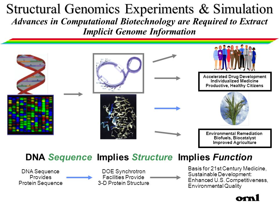DNA Sequence Provides Protein Sequence Basis for 21st Century Medicine, Sustainable Development: Enhanced U.S.