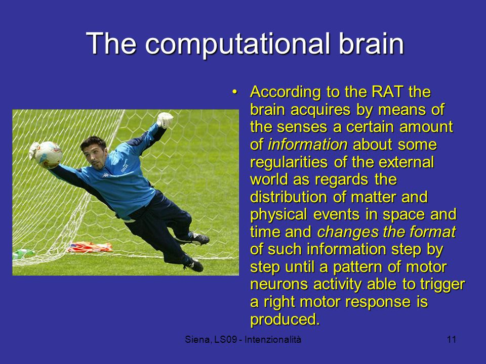 Siena, LS09 - Intenzionalità11 The computational brain According to the RAT the brain acquires by means of the senses a certain amount of information about some regularities of the external world as regards the distribution of matter and physical events in space and time and changes the format of such information step by step until a pattern of motor neurons activity able to trigger a right motor response is produced.According to the RAT the brain acquires by means of the senses a certain amount of information about some regularities of the external world as regards the distribution of matter and physical events in space and time and changes the format of such information step by step until a pattern of motor neurons activity able to trigger a right motor response is produced.
