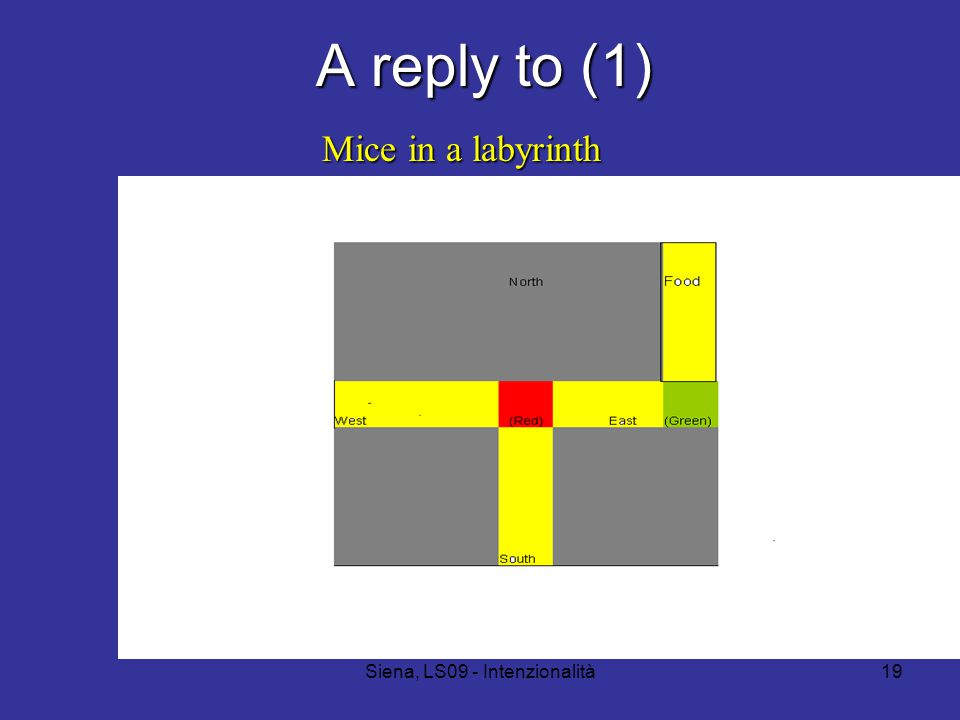 Siena, LS09 - Intenzionalità19 A reply to (1) Mice in a labyrinth