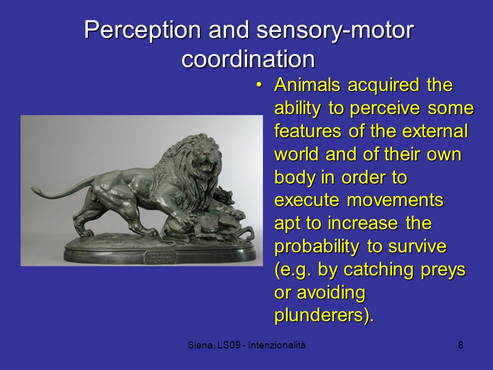 Siena, LS09 - Intenzionalità8 Perception and sensory-motor coordination Animals acquired the ability to perceive some features of the external world and of their own body in order to execute movements apt to increase the probability to survive (e.g.