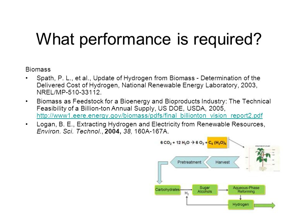 What performance is required. Biomass Spath, P.