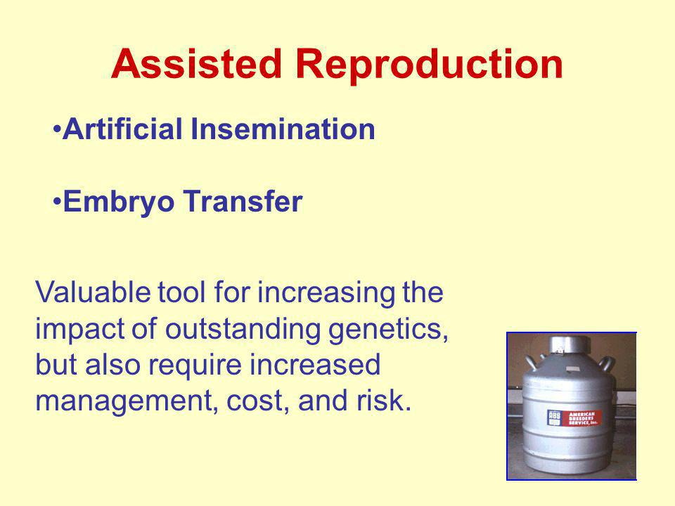Assisted Reproduction Artificial Insemination Embryo Transfer Valuable tool for increasing the impact of outstanding genetics, but also require increased management, cost, and risk.