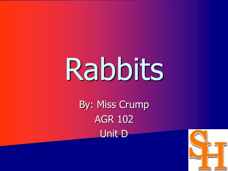 Rabbits By: Miss Crump AGR 102 Unit D