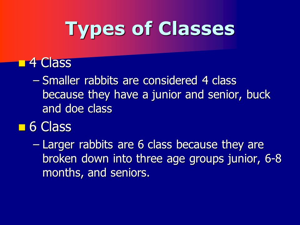Type of Rabbits There are 5 general types of rabbits:There are 5 general types of rabbits: Semi-Arch – Animals are longer in body & have a well defined rise starting at or near the back of the shoulders, & continuing to round over the back and hips to the base of the tail.Semi-Arch – Animals are longer in body & have a well defined rise starting at or near the back of the shoulders, & continuing to round over the back and hips to the base of the tail.