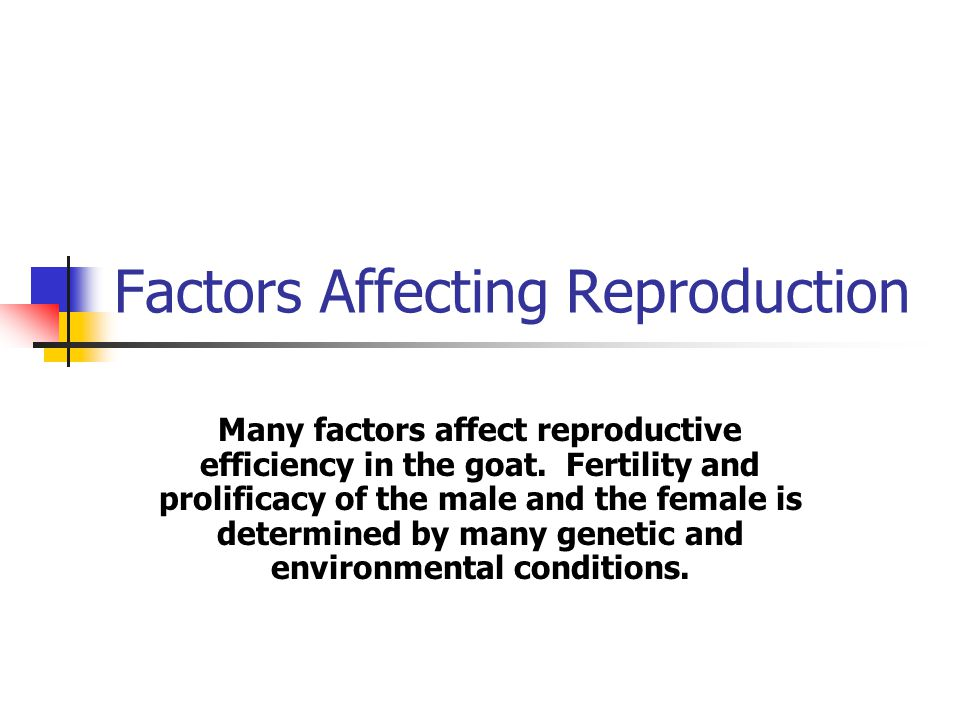 Factors Affecting Reproduction Many factors affect reproductive efficiency in the goat.