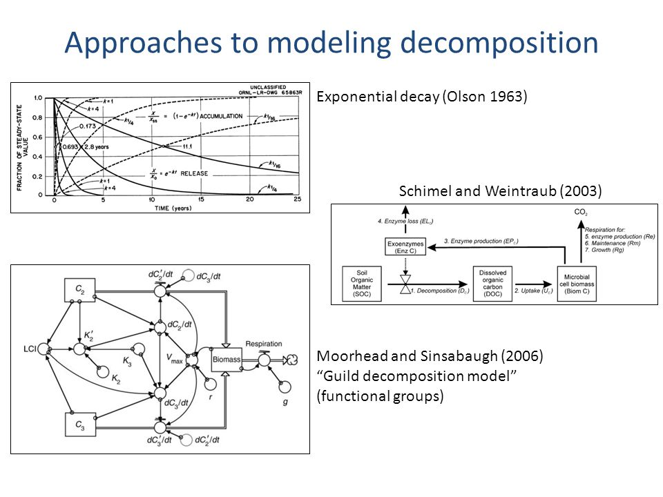 "Approaches to modeling decomposition Exponential decay (Olson 1963) Schimel and Weintraub (2003) Moorhead and Sinsabaugh (2006) ""Guild decomposition m"