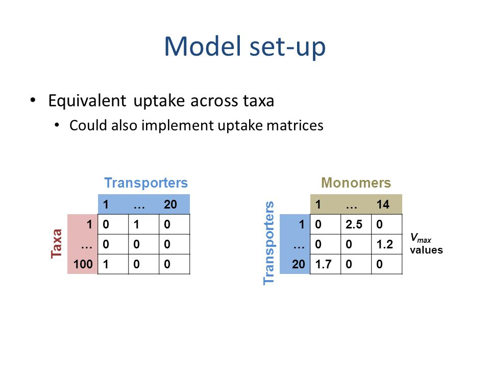 Model set-up Equivalent uptake across taxa Could also implement uptake matrices 1…20 1010 …000 100100 1…14 102.50 …001.2 201.700 Transporters Taxa Tra