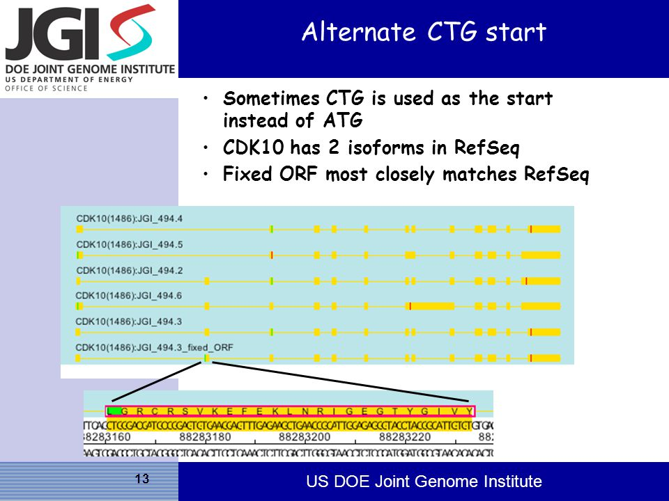 US DOE Joint Genome Institute 13 Alternate CTG start Sometimes CTG is used as the start instead of ATG CDK10 has 2 isoforms in RefSeq Fixed ORF most closely matches RefSeq