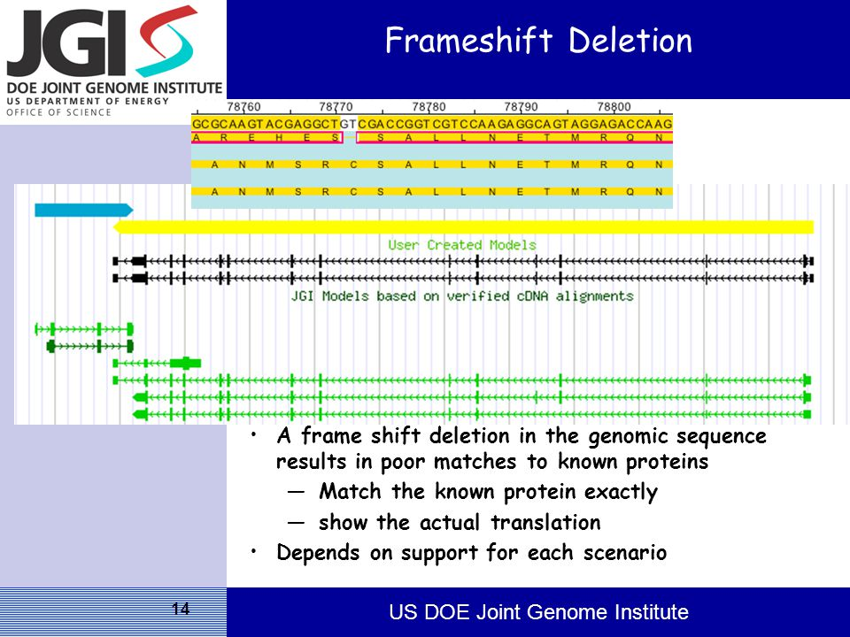 US DOE Joint Genome Institute 14 Frameshift Deletion A frame shift deletion in the genomic sequence results in poor matches to known proteins —Match the known protein exactly —show the actual translation Depends on support for each scenario