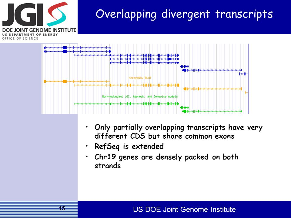 US DOE Joint Genome Institute 15 Overlapping divergent transcripts Only partially overlapping transcripts have very different CDS but share common exons RefSeq is extended Chr19 genes are densely packed on both strands