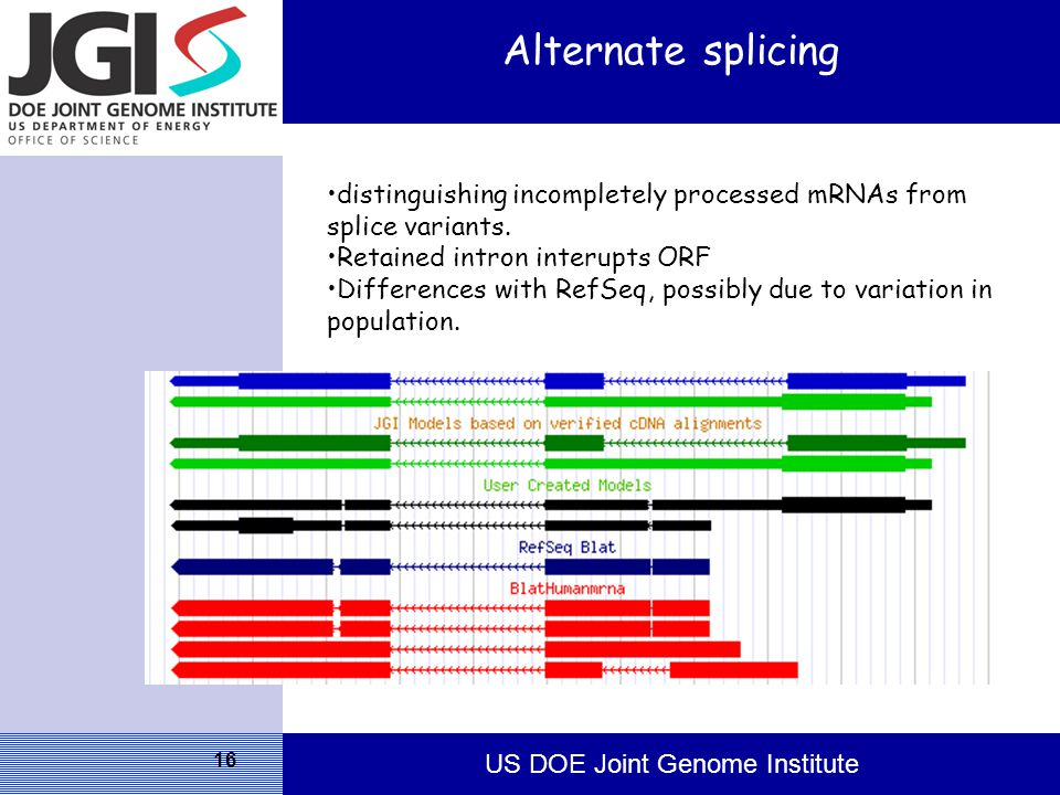 US DOE Joint Genome Institute 16 Alternate splicing distinguishing incompletely processed mRNAs from splice variants.
