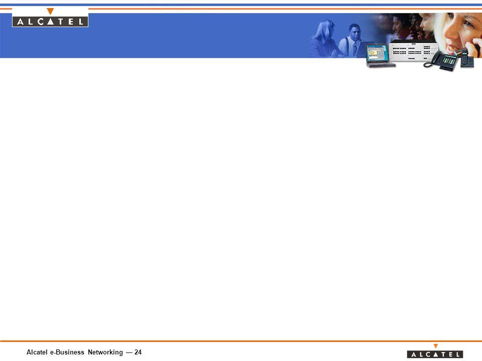 Alcatel e-Business Networking — 24