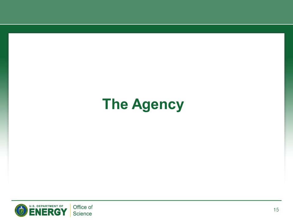 The Agency 15