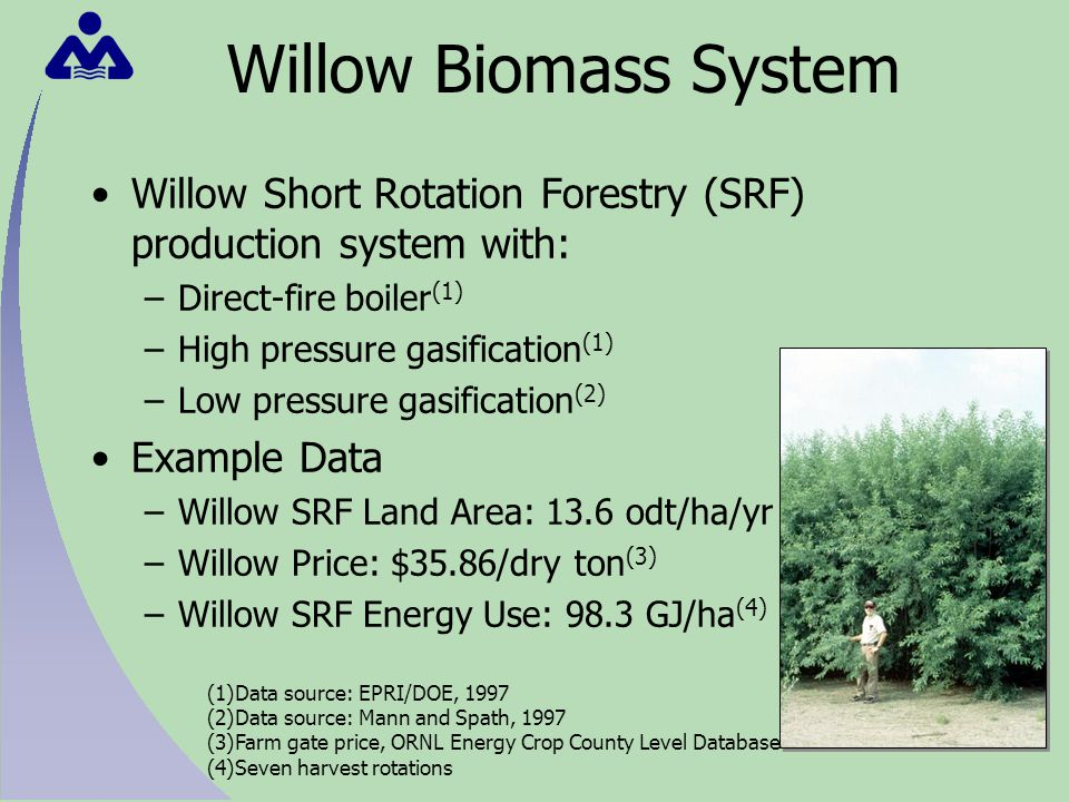 Willow Biomass System Willow Short Rotation Forestry (SRF) production system with: –Direct-fire boiler (1) –High pressure gasification (1) –Low pressure gasification (2) Example Data –Willow SRF Land Area: 13.6 odt/ha/yr –Willow Price: $35.86/dry ton (3) –Willow SRF Energy Use: 98.3 GJ/ha (4) (1)Data source: EPRI/DOE, 1997 (2)Data source: Mann and Spath, 1997 (3)Farm gate price, ORNL Energy Crop County Level Database (4)Seven harvest rotations