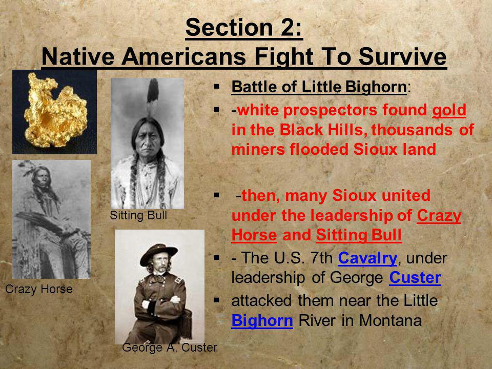 Section 2: Native Americans Fight To Survive  Battle of Little Bighorn:  -white prospectors found gold in the Black Hills, thousands of miners flood