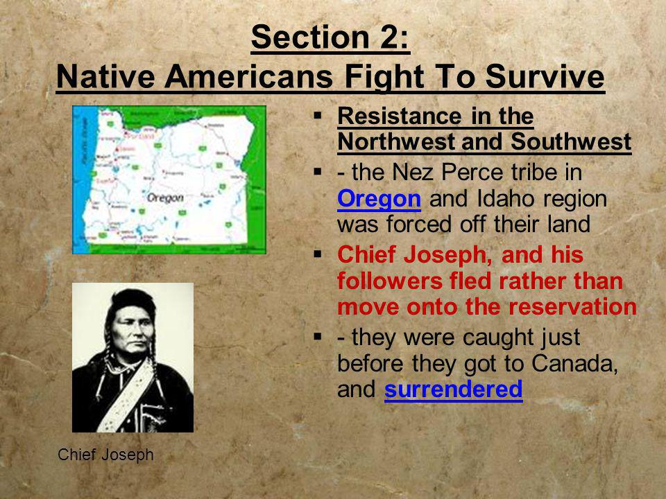 Section 2: Native Americans Fight To Survive  Resistance in the Northwest and Southwest  - the Nez Perce tribe in Oregon and Idaho region was forced