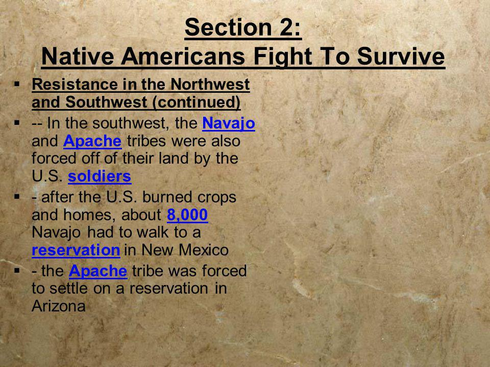 Section 2: Native Americans Fight To Survive  Resistance in the Northwest and Southwest (continued)  -- In the southwest, the Navajo and Apache trib