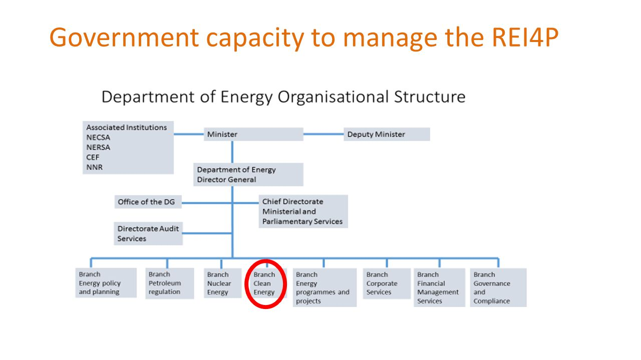 Government capacity to manage the REI4P