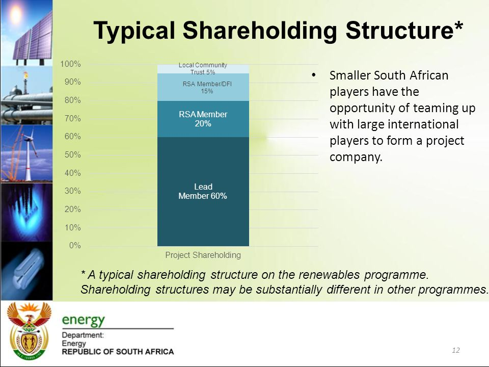 Typical Shareholding Structure* Smaller South African players have the opportunity of teaming up with large international players to form a project co