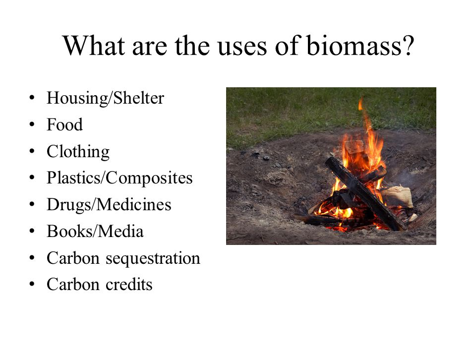 What are the uses of biomass? Housing/Shelter Food Clothing Plastics/Composites Drugs/Medicines Books/Media Carbon sequestration Carbon credits