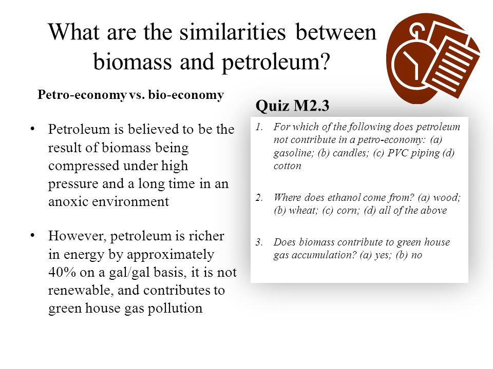 What are the similarities between biomass and petroleum.