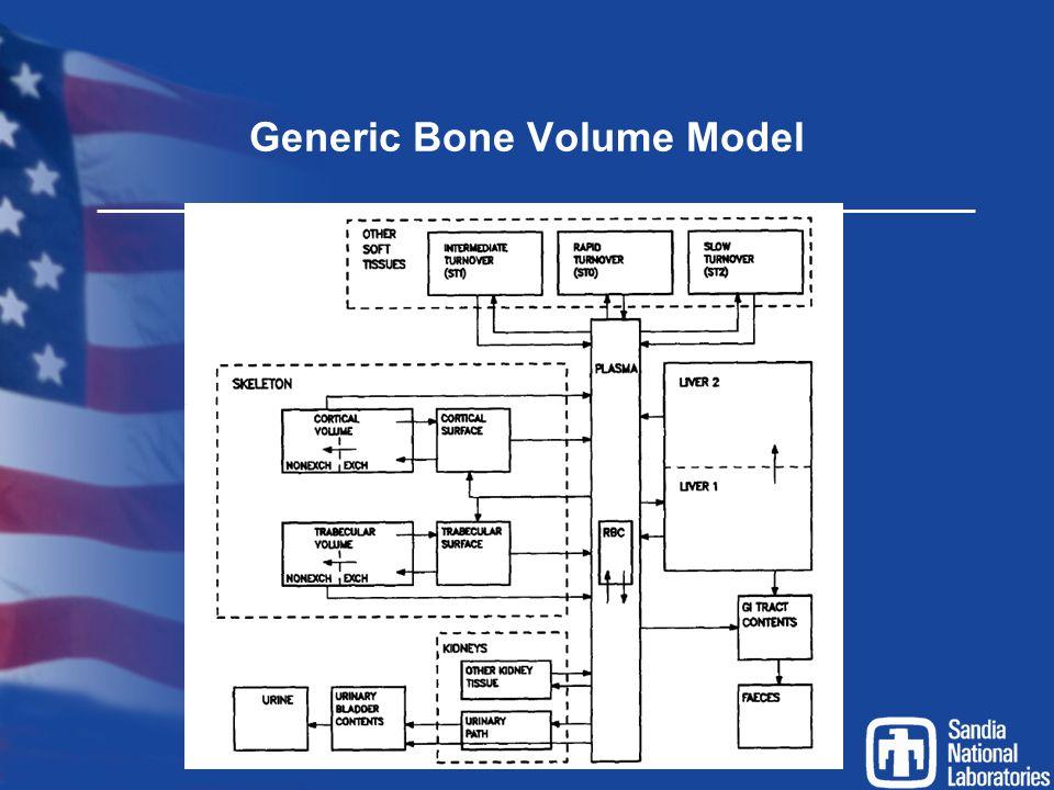 Generic Bone Volume Model