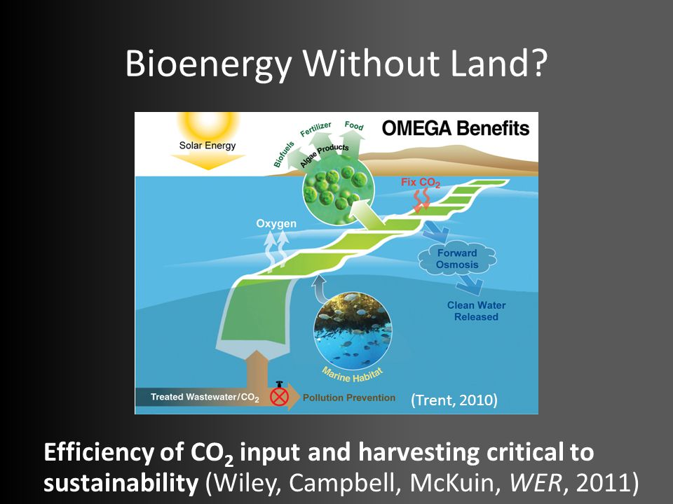 Bioenergy Without Land? Efficiency of CO 2 input and harvesting critical to sustainability (Wiley, Campbell, McKuin, WER, 2011) (Trent, 2010)