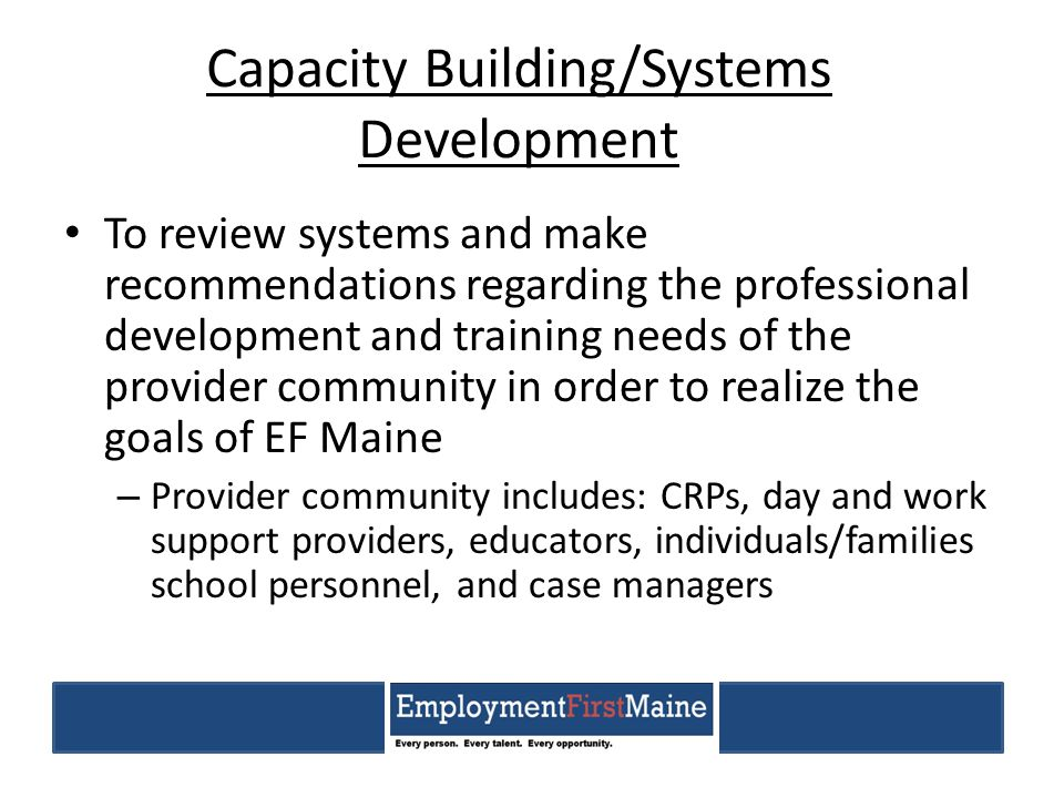 Capacity Building/Systems Development To review systems and make recommendations regarding the professional development and training needs of the prov