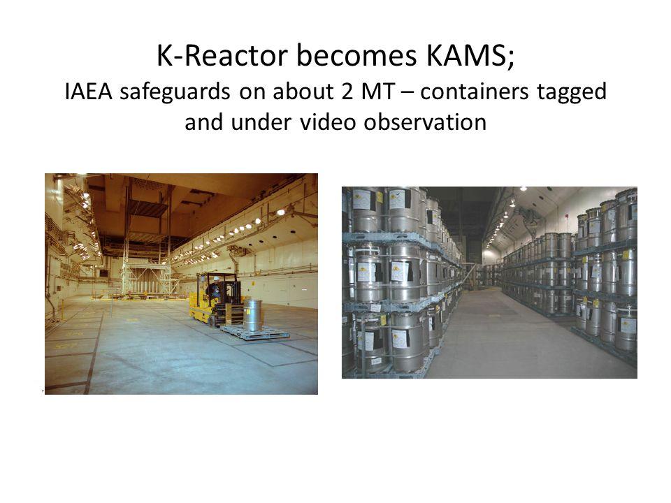 Pantex (Amarillo, Texas) – weapon assembly & dismantlement site, pit storage (limit 20,000)