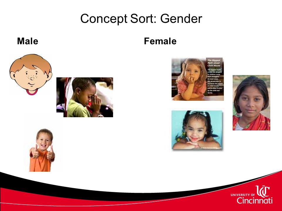Concept Sort: Living and Nonliving Living Velcro Index cards Voice output devices PowerPoint Intellitools Inspiration or Kidspiration Nonliving Online