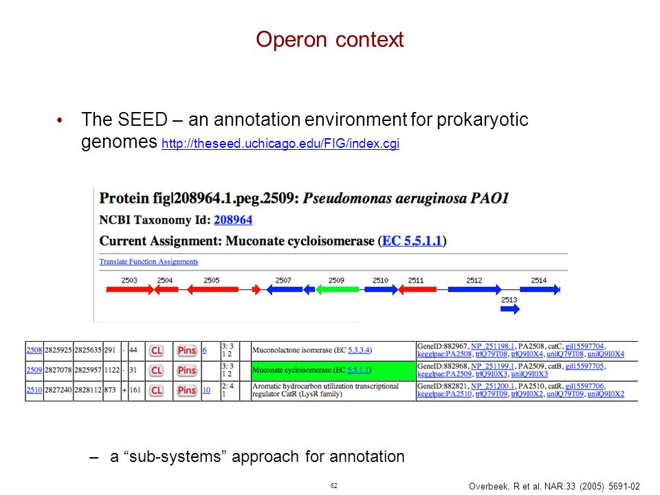 62 Operon context The SEED – an annotation environment for prokaryotic genomes http://theseed.uchicago.edu/FIG/index.cgi http://theseed.uchicago.edu/F