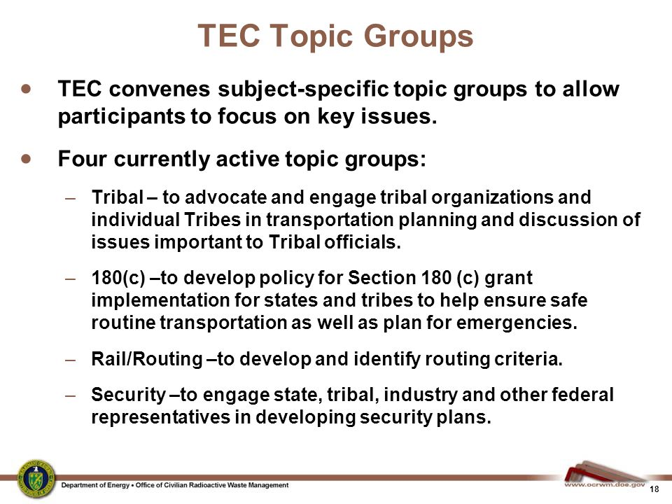 18 TEC Topic Groups  TEC convenes subject-specific topic groups to allow participants to focus on key issues.  Four currently active topic groups: –