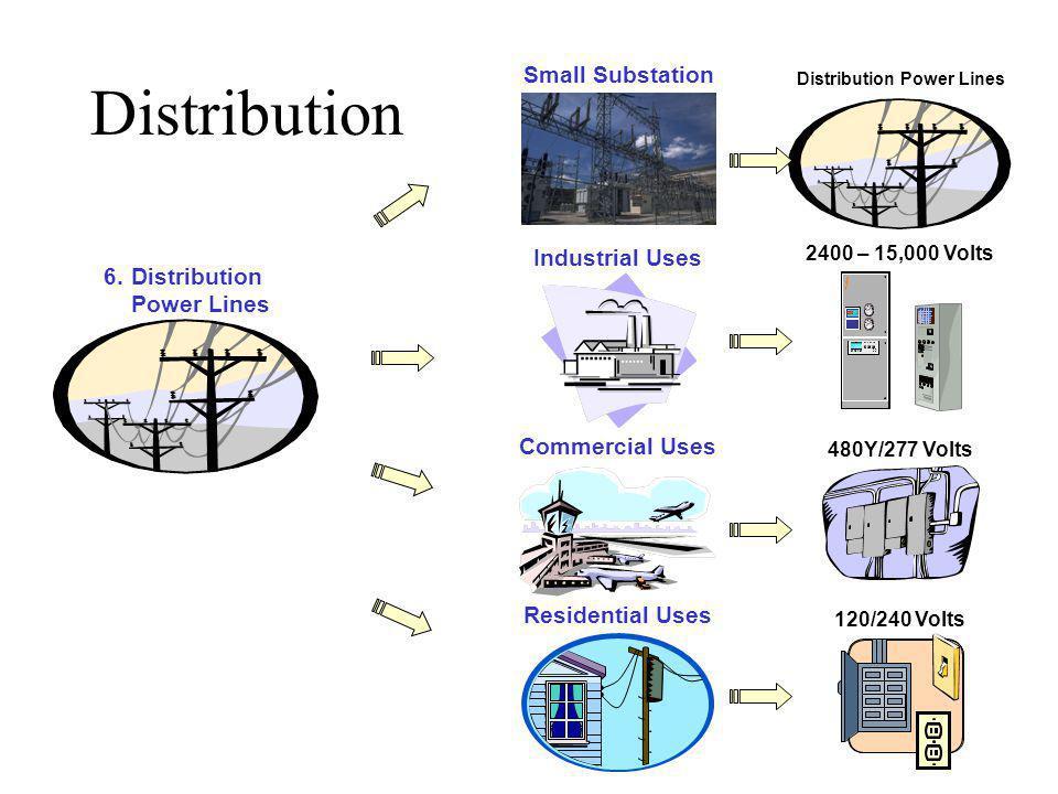 Distribution 6.