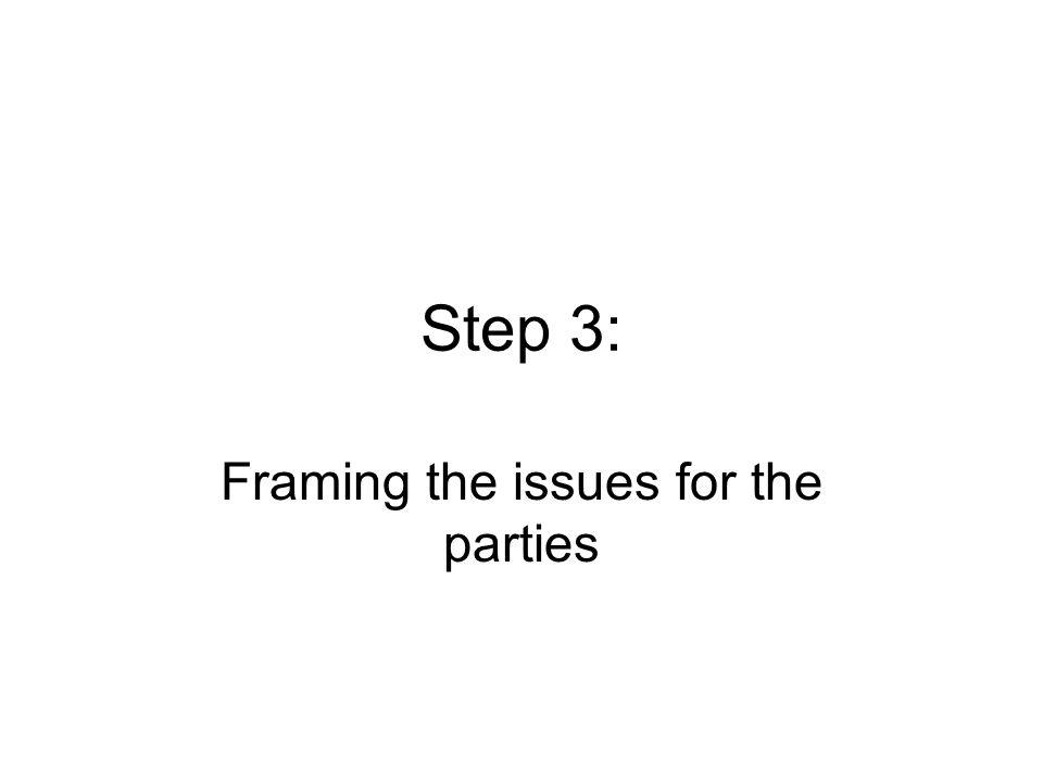 Step 3: Framing the issues for the parties