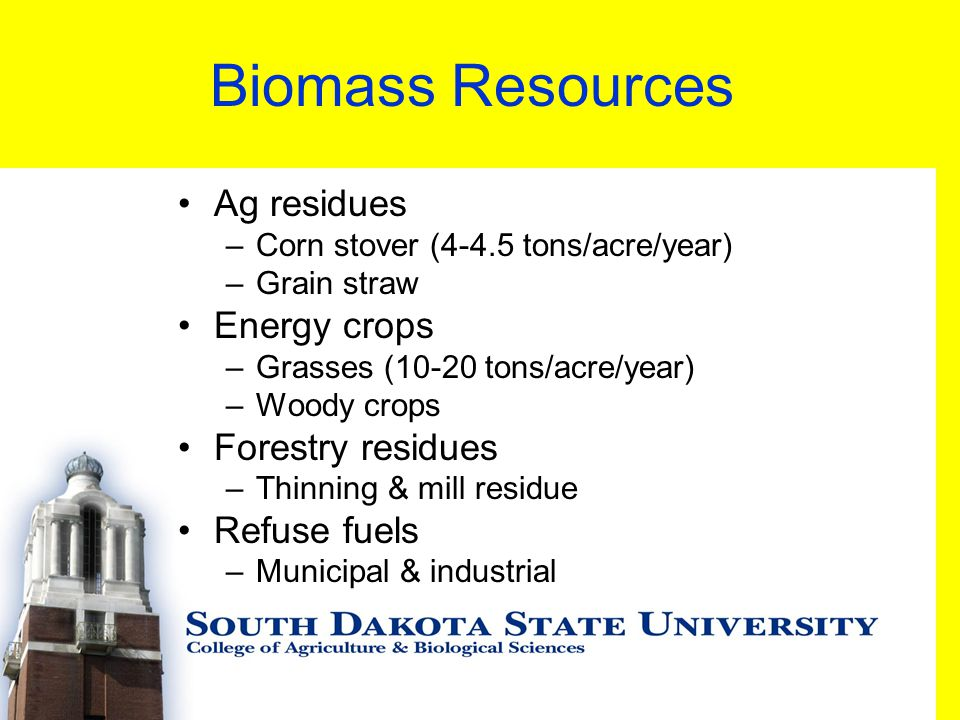 Biomass Resources Ag residues –Corn stover (4-4.5 tons/acre/year) –Grain straw Energy crops –Grasses (10-20 tons/acre/year) –Woody crops Forestry residues –Thinning & mill residue Refuse fuels –Municipal & industrial