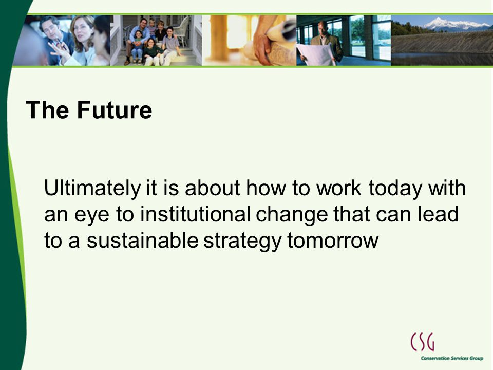 The Future Ultimately it is about how to work today with an eye to institutional change that can lead to a sustainable strategy tomorrow