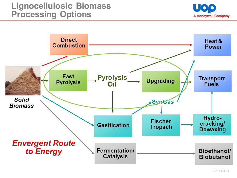 Lignocellulosic Biomass Processing Options Solid Biomass Direct Combustion Fast Pyrolysis Oil Gasification SynGas Heat & Power Transport Fuels Fischer