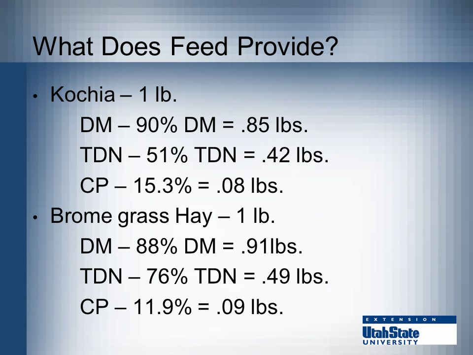 What Does Feed Provide. Kochia – 1 lb. DM – 90% DM =.85 lbs.