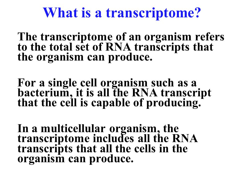 12 What is a transcriptome? The transcriptome of an organism refers to the total set of RNA transcripts that the organism can produce. For a single ce