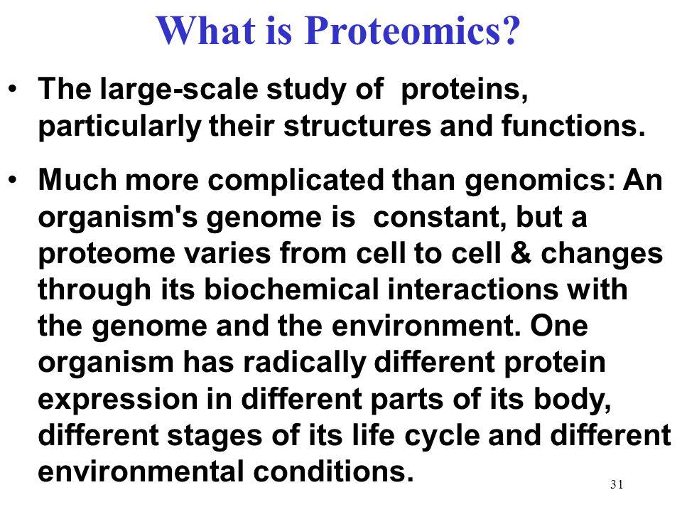 31 What is Proteomics.