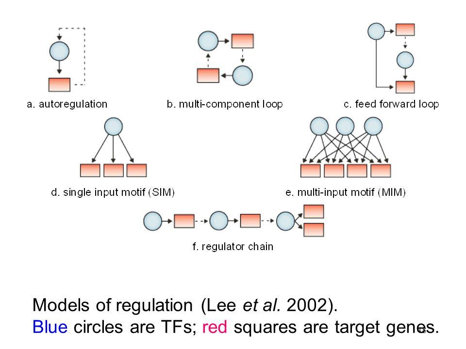 48 Models of regulation (Lee et al. 2002). Blue circles are TFs; red squares are target genes.