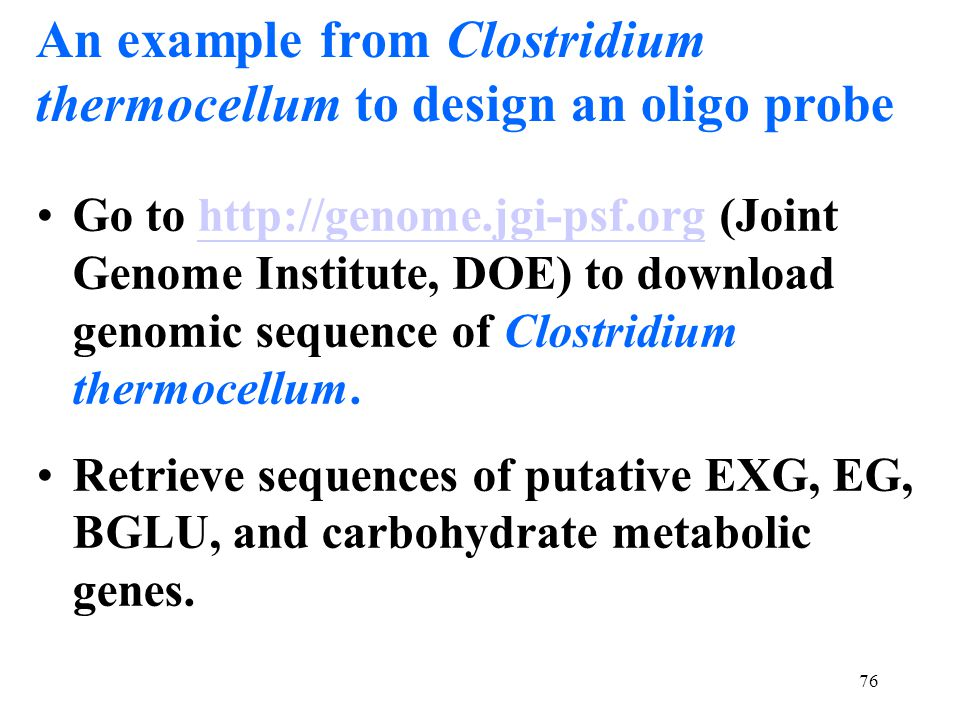 76 An example from Clostridium thermocellum to design an oligo probe Go to http://genome.jgi-psf.org (Joint Genome Institute, DOE) to download genomic
