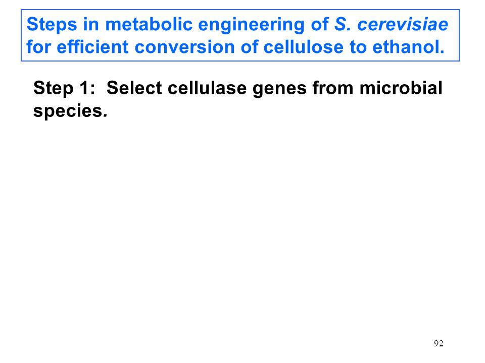 92 Steps in metabolic engineering of S.