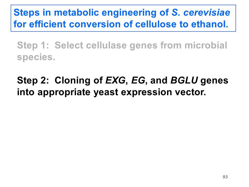 93 Steps in metabolic engineering of S.