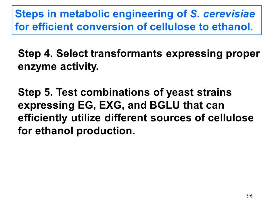 96 Steps in metabolic engineering of S.