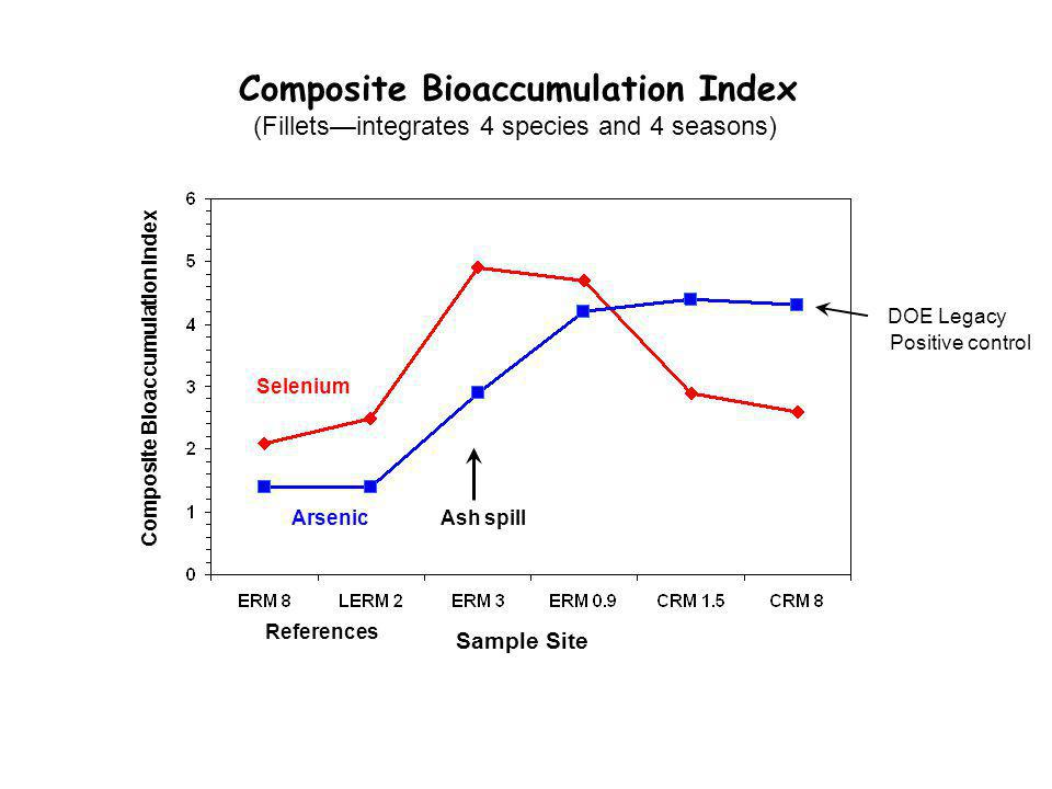 Composite Bioaccumulation Index (Fillets—integrates 4 species and 4 seasons) Arsenic Selenium Composite Bioaccumulation Index DOE Legacy Sample Site Positive control Ash spill References