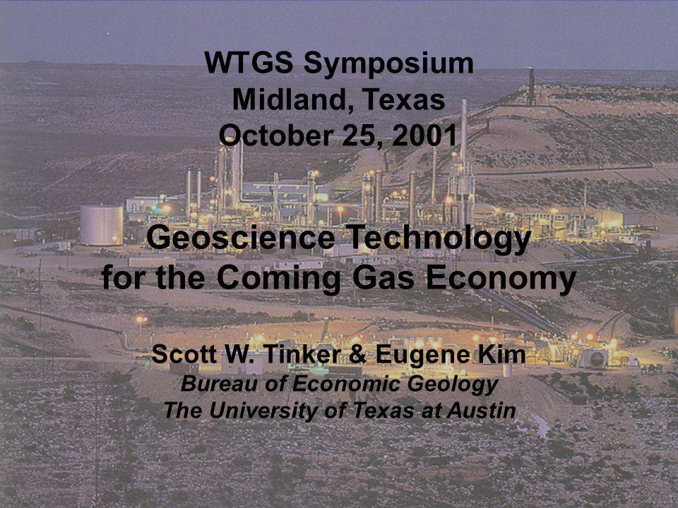 Scott W. Tinker, BEG, 2001 High-Frequency Stratigraphy ILRIS Laser Image